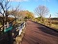 Kiso River Fuso Green Park(6).jpg