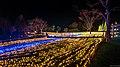 Kisosansen Winter Illumination - panoramio (6).jpg