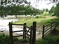 Kissing Gate and footbridge near Eridge Park Lake - geograph.org.uk - 1412020.jpg