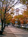 Kobe Harbor Land Gaslight street02.jpg