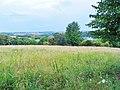 Kohlberg Pirna - panoramio (9).jpg