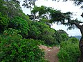 Kollengode South, Kerala, India - panoramio (42).jpg