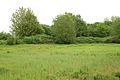 Kreis Pinneberg, Naturschutzgebiet Liether Kalkgrube 20.jpg