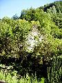 Krezluk Ruins 4.jpg