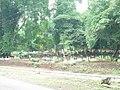 Kuburan Desa Karang Tengah, Maleber, Kuningan - panoramio.jpg