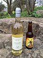 Kullahalvöns vingård Solaris och Bräcke Brun.jpg