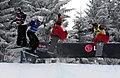 LG Snowboard FIS World Cup (5435933500).jpg