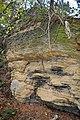 LSG Sudmerberg - Kreide-Sandstein (8).jpg