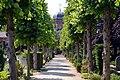 Laan met op de achtergrond de Arcade, Begraafplaats Sint Petrus Banden, Den Haag.jpg