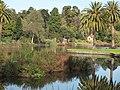 Lake in Melbourne Botanic Gardens 20180726-016.jpg