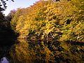 Lake in Skodsborg - Autumn - panoramio (1).jpg