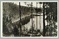 Lammasharju, Valkialampi, beginning 1930 PK0230.jpg