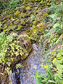 Landscape of Bjelusa - 7408.CR15.jpg