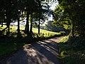 Lane to Clampitt - geograph.org.uk - 578662.jpg
