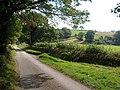 Lane to Foxcombe - geograph.org.uk - 247984.jpg