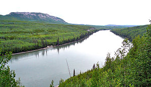 Liard River - Liard River near Liard River Hot Springs