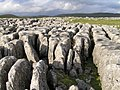 Limestone pavement -near Malham, Yorkshire, England-26Oct2004 (1).jpg
