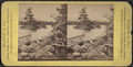 Little Chicken Island, Lake George, from Robert N. Dennis collection of stereoscopic views 3.png