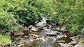 Long Run- North fork blackwater River.jpg