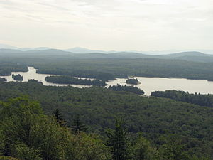 Lows Lake (New York) - Low's Lake, looking southwest from Grass Pond Mountain