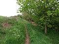 Loy Lane - geograph.org.uk - 802596.jpg