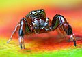 Lukjonis - Male Jumping spider - Sibianor larae.jpg