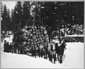 Lumber Industry in Alaska.jpg