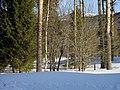 Lyovintsy, Kirovskaya oblast', Russia, 612079 - panoramio (113).jpg