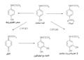 Métabolisme paracetamol-ar.png