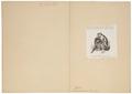 Macacus speciosus - details - 1872 - Print - Iconographia Zoologica - Special Collections University of Amsterdam - UBA01 IZ20000106.tif