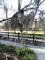 Magnolia Plantation and Gardens - Charleston, South Carolina (8555357959).jpg