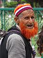 Man with Henna Beard - Outside Nishat Bagh Garden - Srinagar - Jammu & Kashmir - India (26238438773).jpg