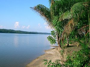Maroni (river) - Maroni River, view from French Guiana to Suriname