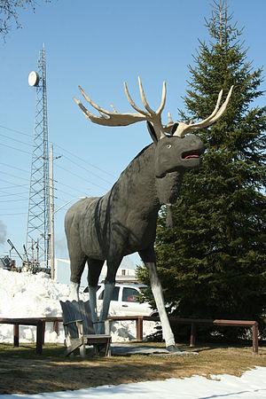 Dryden, Ontario - Max the Moose in Dryden
