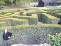 Maze at Leeds castle viewed from the centre - geograph.org.uk - 1555591.jpg