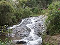 Medellin, Antioquia, Colombia - panoramio (3).jpg