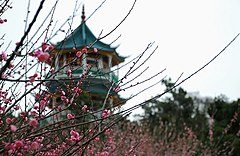 Meiyuan Nianqu Pagoda.jpg