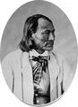 Mijuel Sheopa. Apache, 1872 - NARA - 518964.tif