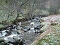 Milton Glen Burn, in the woods - geograph.org.uk - 332621.jpg