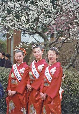 Mito, Ibaraki - Image: Mito Plum Festival