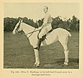 Modern polo (1902) (14595782739).jpg