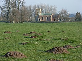 Molehills and St Matthew's