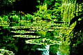 Monet's bridge at Giverney, near Paris, France - panoramio.jpg