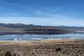 Mono Lake, a large, shallow saline soda lake in Mono County, California LCCN2013633537.tif