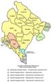 Montenegro languages2003.png