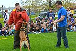 Month of Military Child MWD demonstration 150414-F-OH119-126.jpg