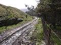 Moorland Track - geograph.org.uk - 1205681.jpg