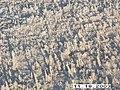 Moose Survey, Yukon-Charley, 2003 2 (937c3df9-1e99-4c43-91db-20e524d73a70).jpg