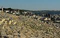 Mount of Olives (14988461367).jpg