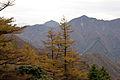 Mt.Hinokiboramaru 10.jpg